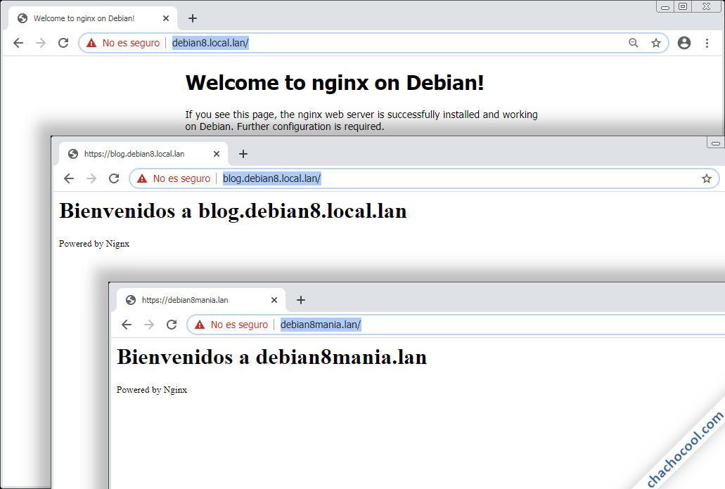 Nginx para Debian 8 Jessie